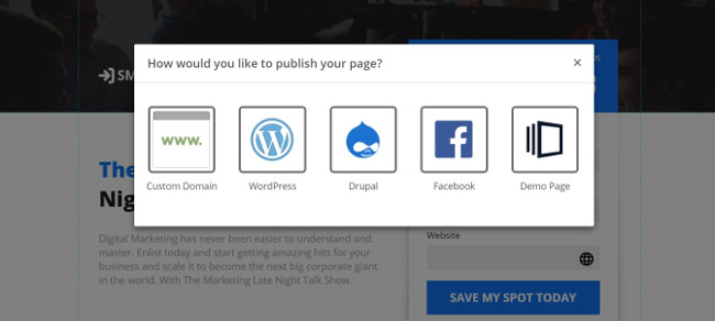 Publishing Options - Instapage Review